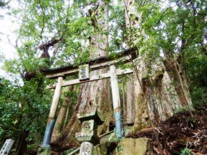 Sanctuaire Tsugizakura-oji