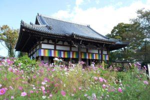 Le drapeau bouddhique, goshikimaku