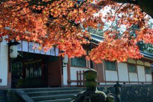 Au sanctuaire Tamukeyama-hachimangu
