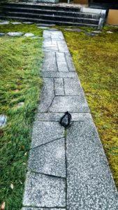 Chemin pavé de pierres taillées