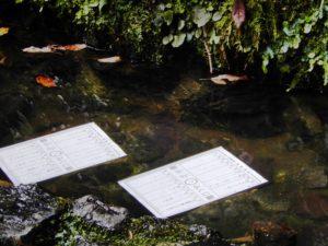 Omikuji flottant sur l'eau