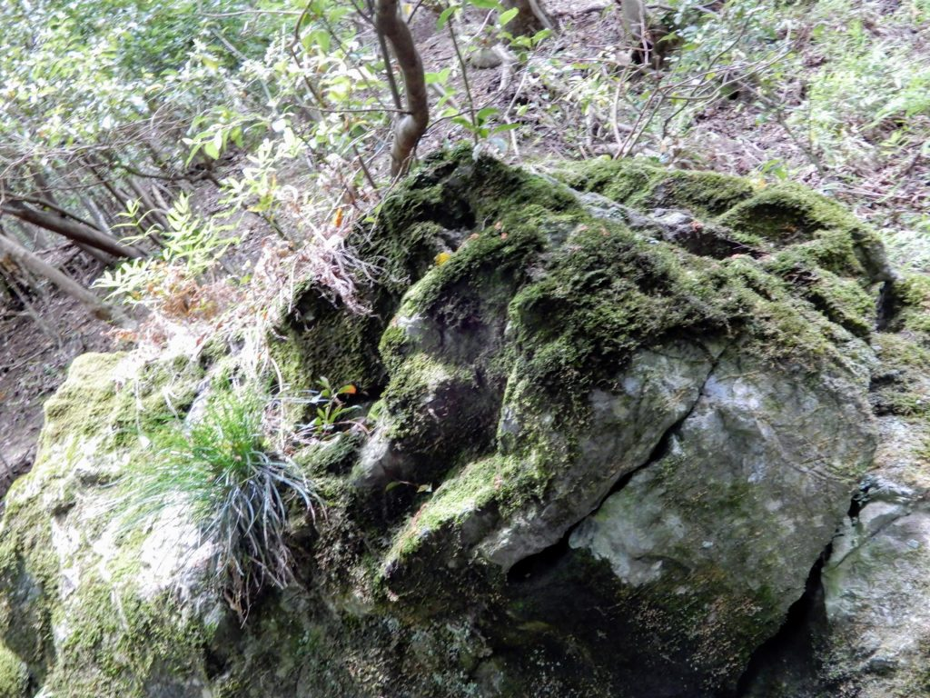 Tengu-iwa, roche calcaire