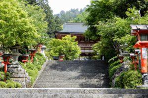 Une randonnée en pleine nature entre Kurama et Kibune (première partie)