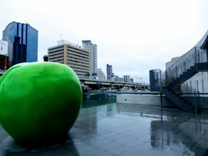 Pomme verte, symbole de la jeunesse éternelle