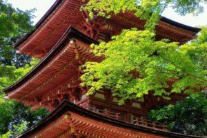 Mes endroits préférés à Kizugawa
